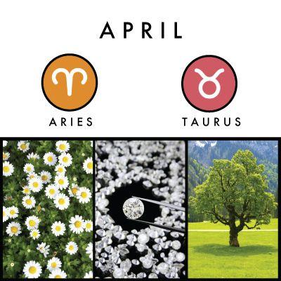 259340221f96007b5671f7b4b8bb02bb--april-flower-birth-month