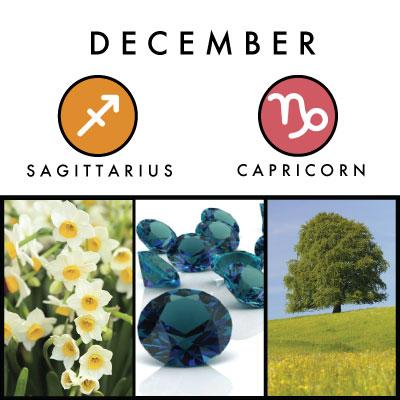 birth-symbols-12-pg-full