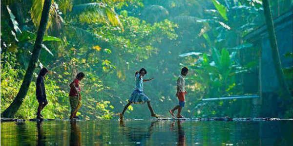 Kerala-rain-main-image